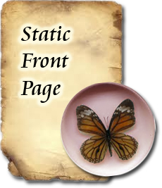 static home page wordpress